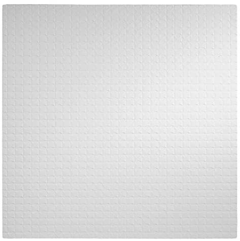 Genesis Straightforward Set up Basic Professional Lay-in White Ceiling Tile/Ceiling Panel, Carton of 12 (2′ x 2′ Tile)